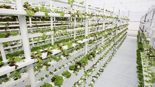 How motion platics make agriculture sustainable
