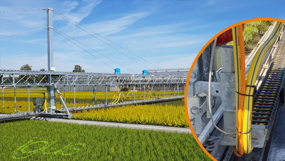 igus roller e-chain for targeted irrigation with savings potential